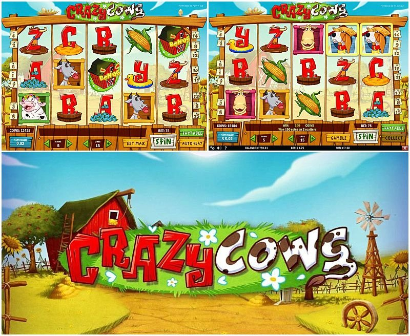 Crazy Cows slot Quick 20381