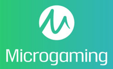 Microgaming spelautomat 18554